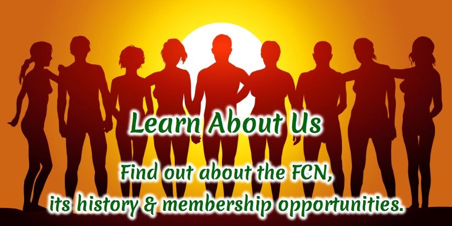 Learn about the FCN link