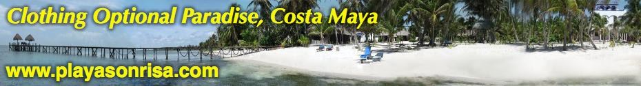 Playa Sonrisa banner ad and link